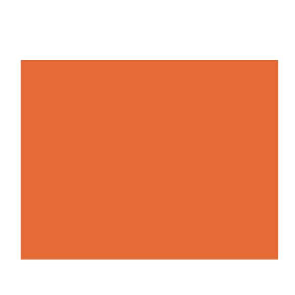 poster board 22x28 orange r0450102